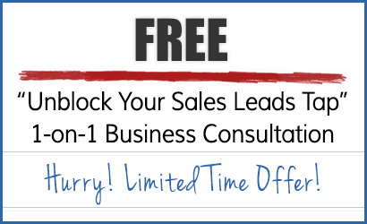 """Free 45-minute """"Unblock Your Sales Leads Tap"""" 1- on -1 Business Consultation"""